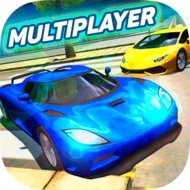 Multiplayer Driving Simulator (MOD, unlimited money)