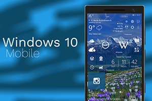 Vulnerability smartphone based on Windows Mobile